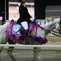 写真: 川崎競馬の誘導馬05月開催 藤Ver-120514-11-large