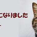 Photos: たびちゃん