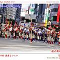 写真: 國士舞双_15 - 第11回 東京よさこい 2010