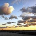 伊良湖水道の朝雲