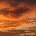 Photos: Sunset_16