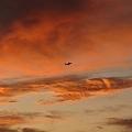 Photos: Sunset_17