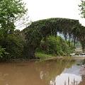 草の絡まった石橋