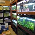 Photos: 2010 06/07 プチファームO2 011