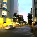 Photos: 渋谷の交差点。