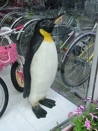 20100601 ペンギンサイクル