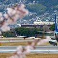 Boeing, Blooming !