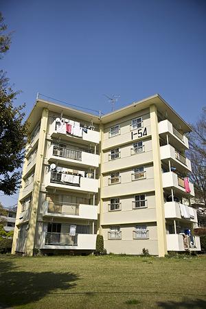 tokiwadai090411018