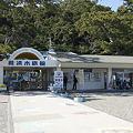 写真: katurahama110311331