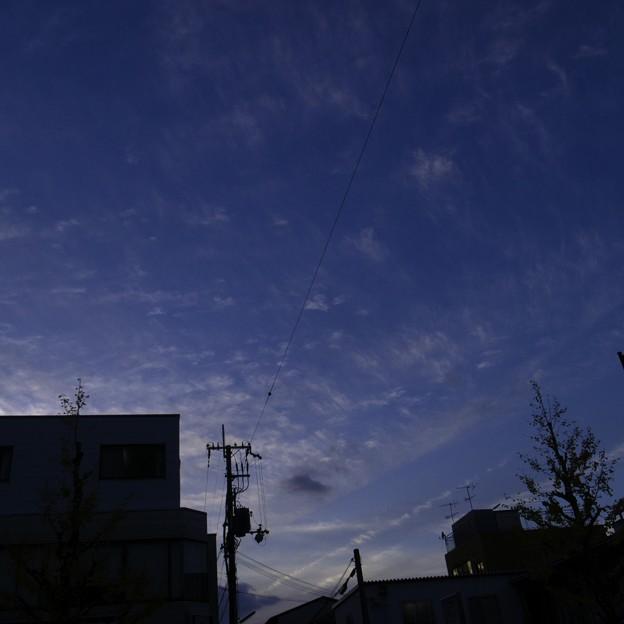 Photos: 2010-11-28の空