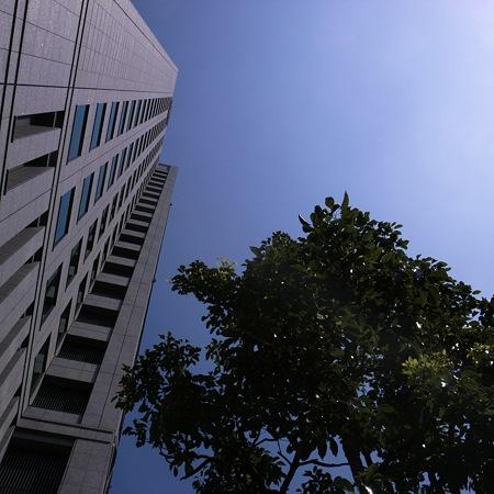 2011-08-10の空