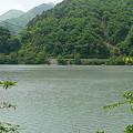 Photos: 雨畑湖沿いに続く林道