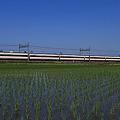 1121列車