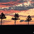 メルヘンの丘夕景