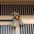Photos: 2011年01月09日_DSC_0174