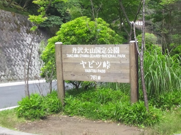 写真: 20110704_093752