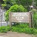 Photos: 20110704_093752