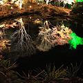 鏡の池・円通院