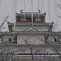 氷柱攻め・鶴ヶ城
