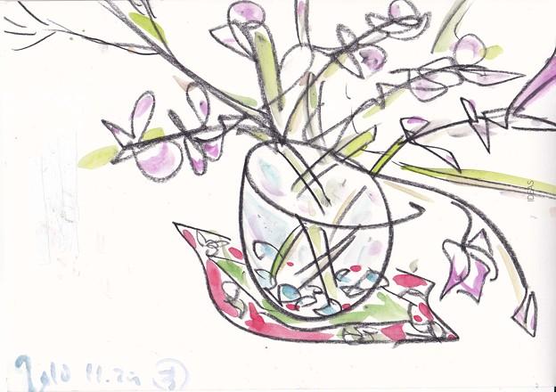 写真: 誕生日祝いの蘭の花