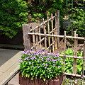 Photos: 2011_0603_125839