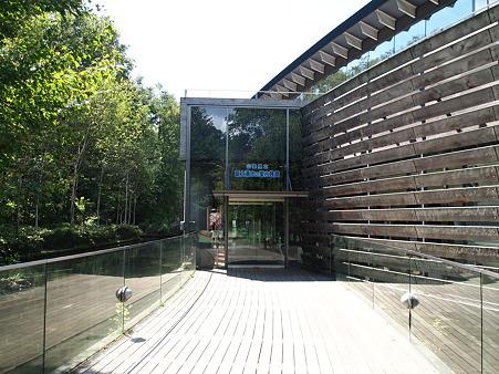 森の中の水族館