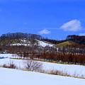 道東の3月始めの景色
