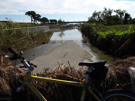 水没していた河川敷の道