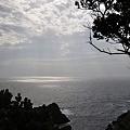 写真: 20110627_161734_raw
