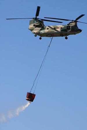 CH-47J #495 IMG_0656