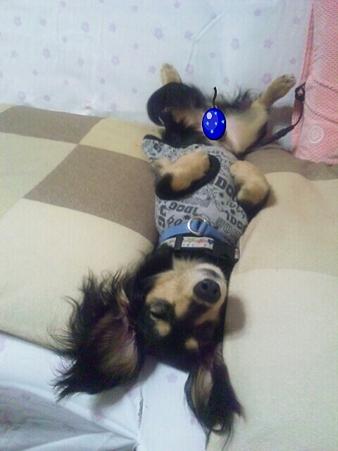 PhotoHenshu_20120526213344