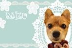 ブログ用2010大豆デコ