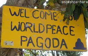 パゴダへの看板