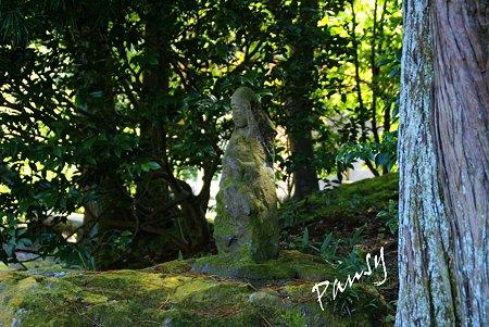 木漏れ日のなかの慈しみ・・長月の浄智寺・・5