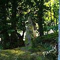 Photos: 木漏れ日のなかの慈しみ・・長月の浄智寺・・5