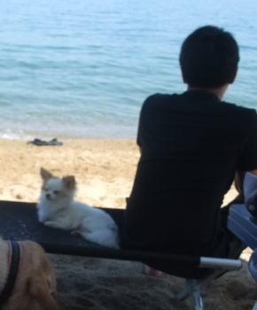 Photos: 海で二人でたそがれる