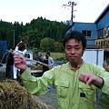 ハサがけ'09 (28)