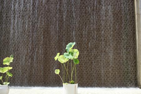 淡路夢舞台温室 奇跡の星の植物館 - 01