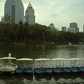 Photos: バンコク|ルンピ二―公園 スワンを漕ぐのはかなり大変