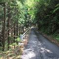 Photos: 110509-17国道439号