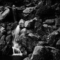 Photos: 庭園の滝