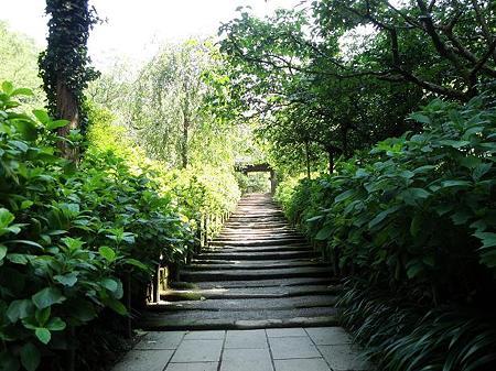 明月院への階段