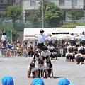 Photos: 運動会 組体操