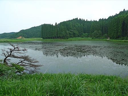 樫原湿原(1)