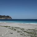 写真: IMG_6968神津島__天上山登山と島巡り