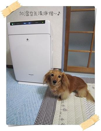 20110720 加湿空気清浄機