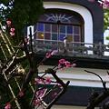 尾山神社 神門2