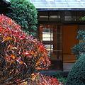 Photos: 戸定邸 中庭