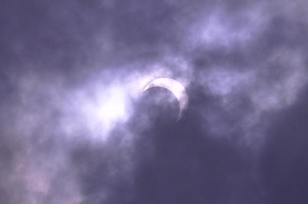 朝の三日月。。。金環日食