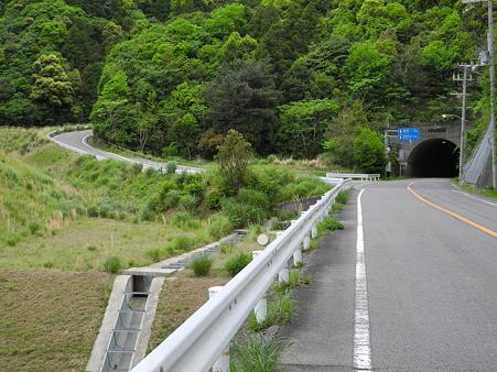 森林基幹道白馬線-1